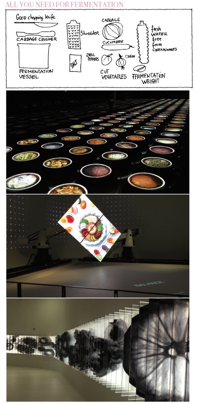 Impressions from the Korea Pavilion at EXPO 2015 in Milano