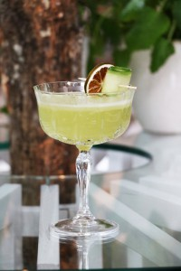 Cucumber Fizz_1 (Large)