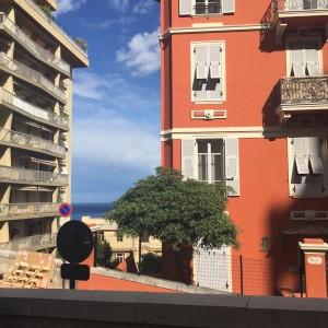 MC_Architecture in Monte Carlo