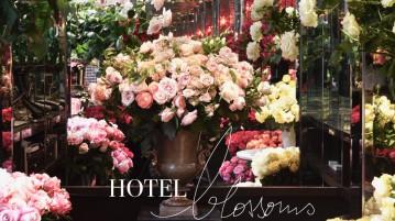 slider-hotel-florists